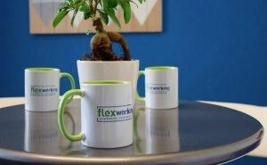 Foto del Coworking Flexworking_3